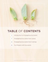 Table of Contents for Propagating Succulents