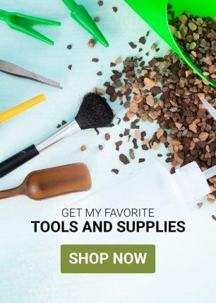 succulent tools ad