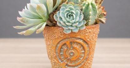 hand built ceramic pottery succulents susan aach copper blue orange