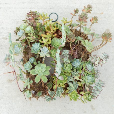 cleaning up wreath