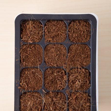coconut coir for succulent seeds