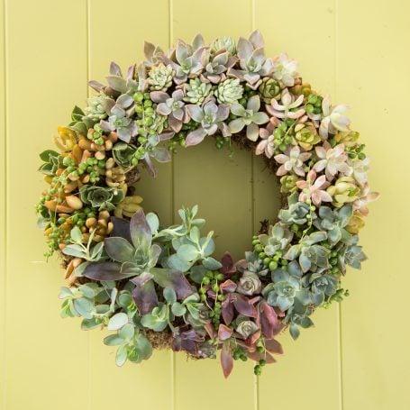 colorful succulent wreath