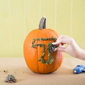 outline letter with small succulents to create monogram on pumpkin