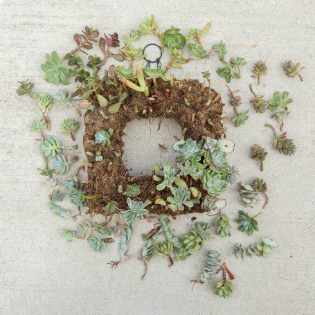 deconstructing succulent wreath