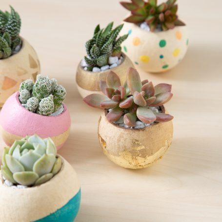 painted bell cups filled with succulents