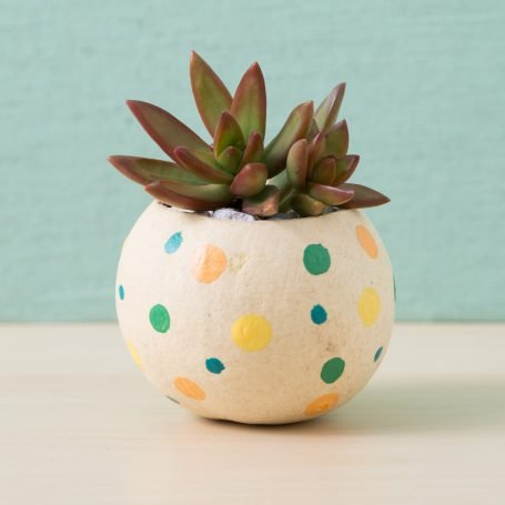 polka dot painted diy bell cup succulent planter