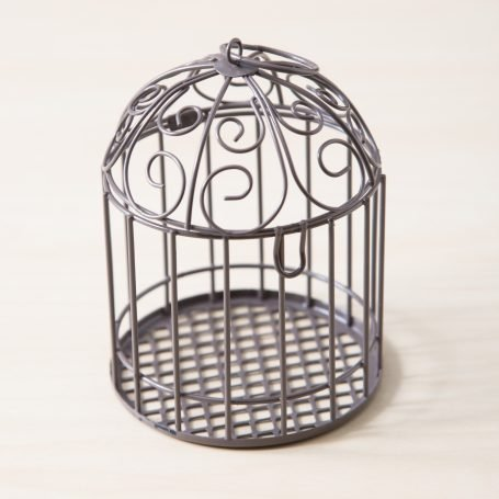 empty birdcage mini succulent garden