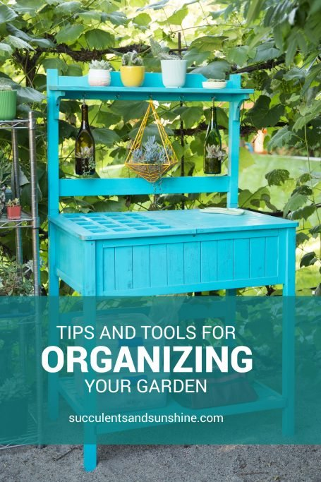 tips tools for organizing succulent garden yellow planter pots planters