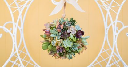 how to make a succulent topiary ball
