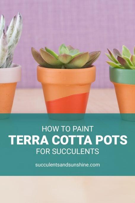 how to paint terra cotta pots for succulents