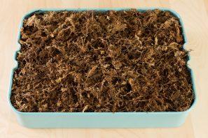 sphagnum moss filled tray ikea raskog cart