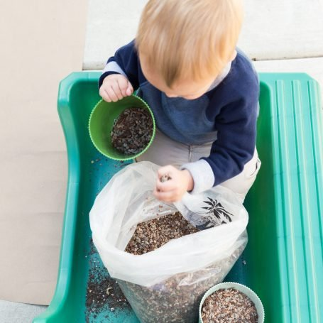 boy helping plant succulents scooping well draining soil kids
