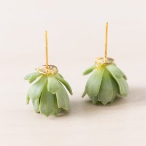 earrings made from live succulents