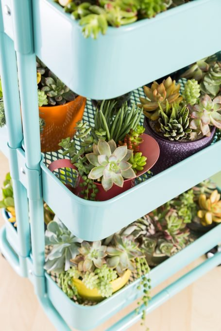 potted succulents in ikea raskog cart
