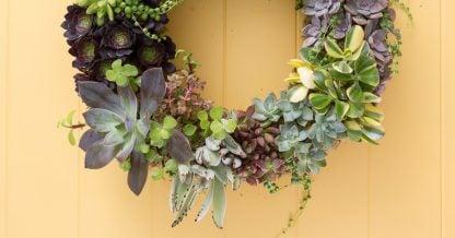 living succulent wreath tutorial