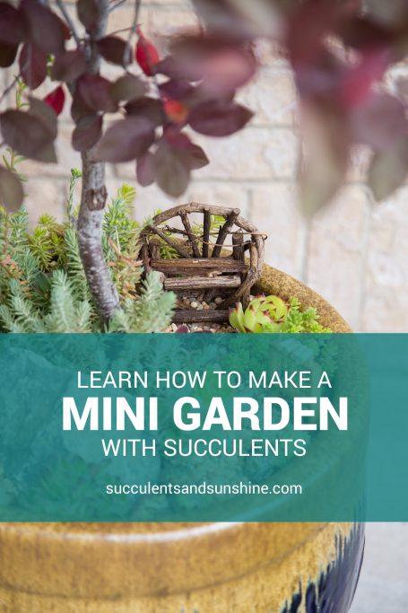 minigarden pinnable template