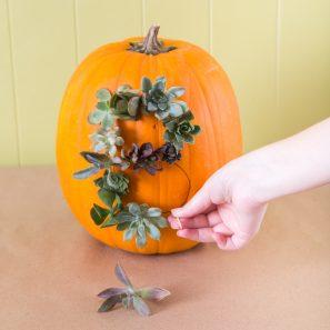 use succulents to create a word on pumpkin unique decoration idea