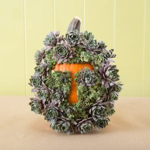 monogram outlined with succulents on pumpkin unique decorating idea