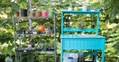 metal succulent planting shelf blue succulent potting table