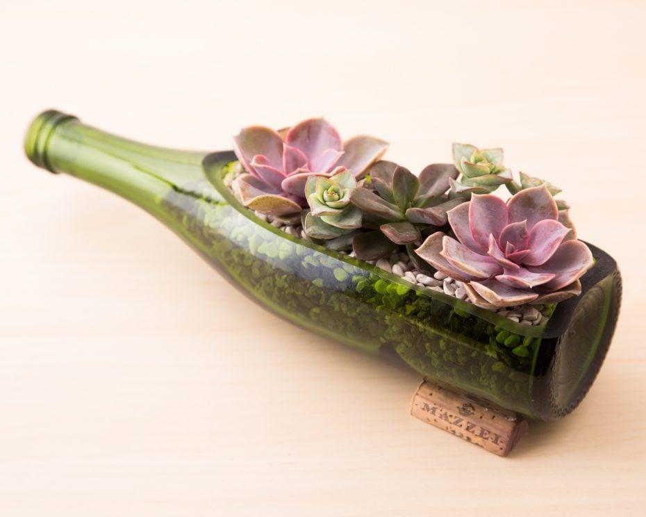 purple green succulents wine bottle