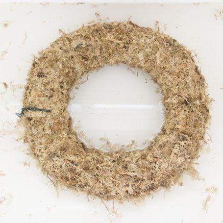 sphagnum moss wreath form