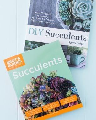 succulent books cassidy tuttle