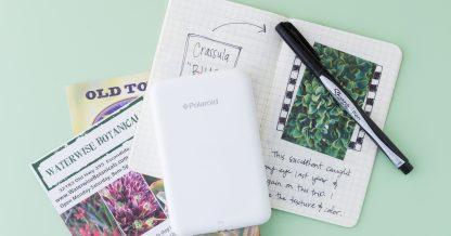 green succulent garden journal diary pen printer images
