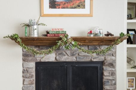 christmas colored succulent garland cuttings