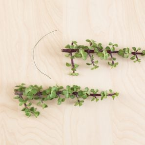 use wire to attach succulent cuttings together to form garland