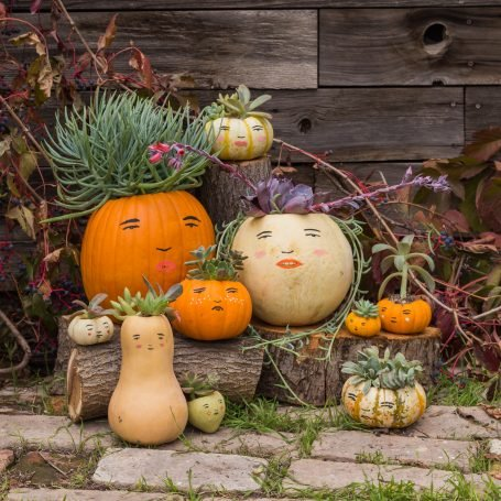 pumpkin family painted faces succulent hair