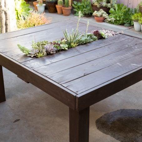 design wood table succulent centerpiece echeverias sedums sempervivums crassulas string of hearts