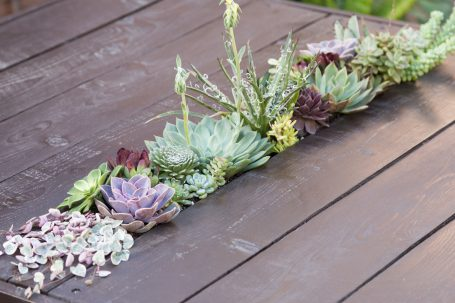 tips creating succulent table Ceropegia woodii string of hearts echeverias wood centerpiece
