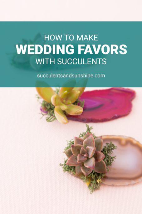 succulent wedding favor tutorial
