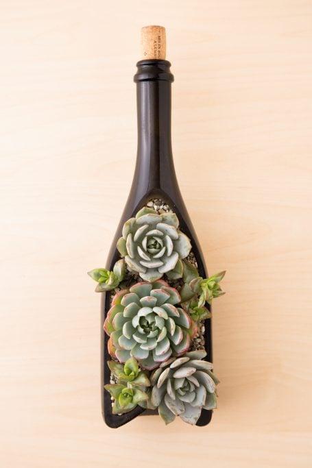 succulents in wine bottle planter