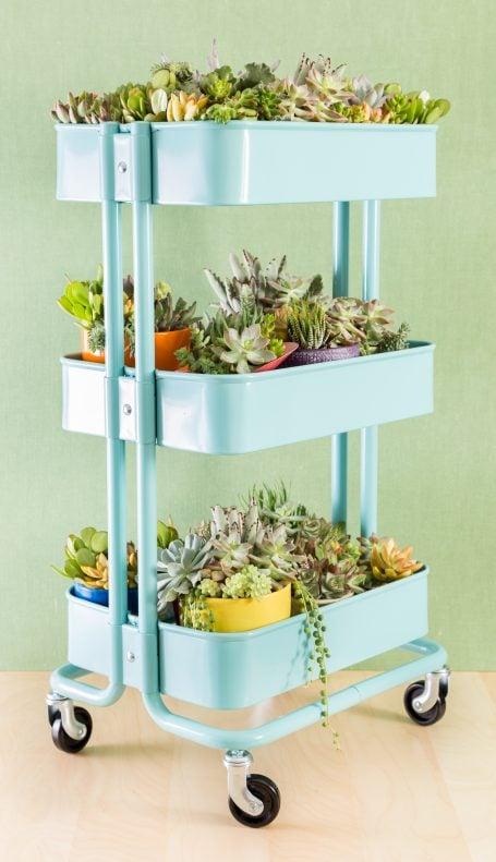 raskog ikea cart blue full of succulent plants