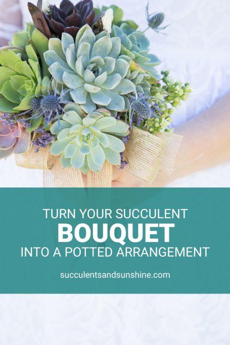 turn succulent bouquet into potted arrangement wedding mememto lasts longer than flowers