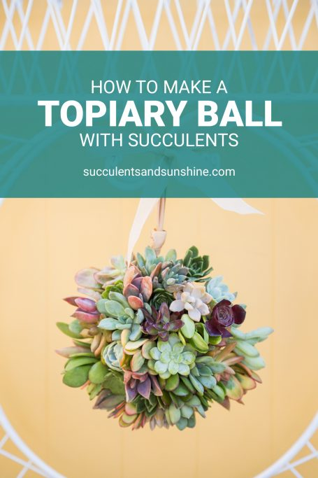 tutorial for succulent topiary ball