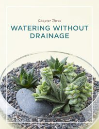 watering without drainage