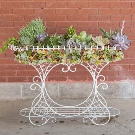 succulent filled wire planter purple green blue cuttings echeveria kalanchoe